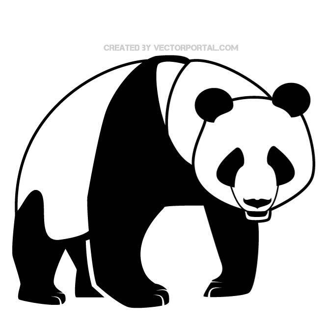 660x660 Panda Vector Illustration. Panda