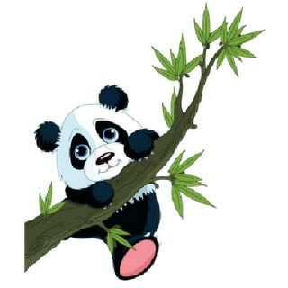 Panda Cartoon Clipart