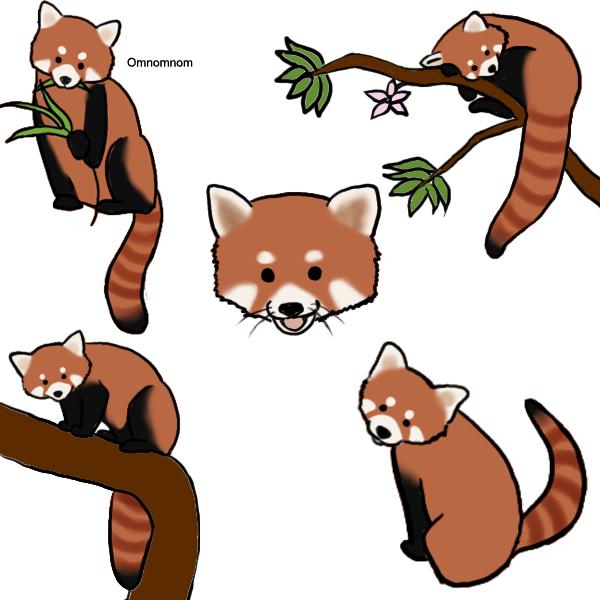 600x600 Red Panda Clip Art Clipart Panda