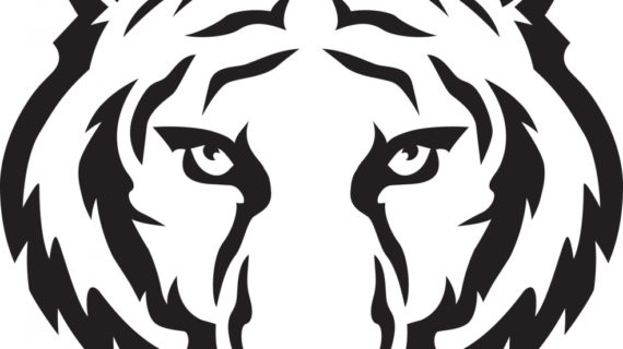 570x320 Tiger Face Drawing Tiger Face Clip Art Black And White Clipart