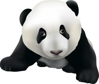 340x290 Panda head clipart free images 5