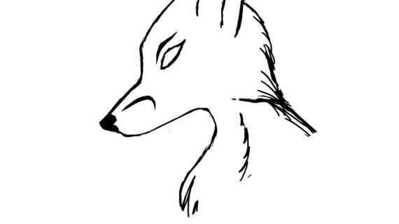 570x320 Outline Drawing Of A Fox Fox Head Outline Clipart Panda