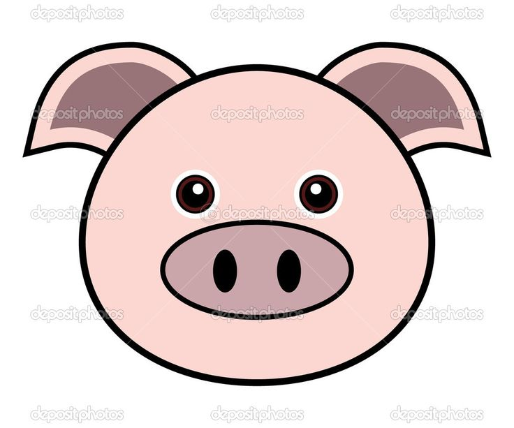 736x613 44 best Pigs images Piglets, Baby pig and Board ideas