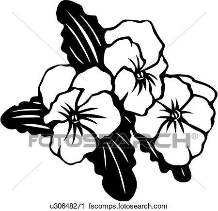 450x435 Clipart Of , Flower, Pansies, Pansy, Varieties, U30648271