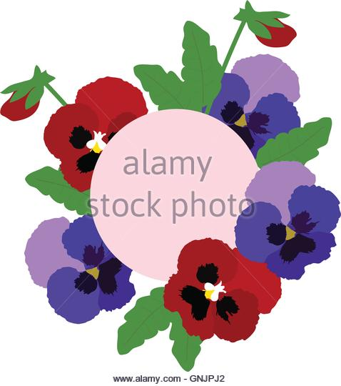 478x540 Pansies Stock Vector Images