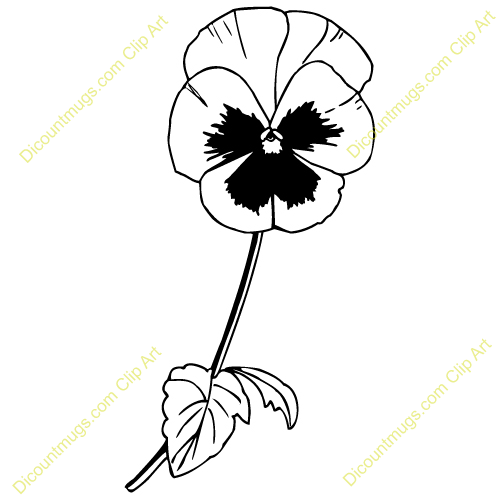 500x500 Pansy Clipart