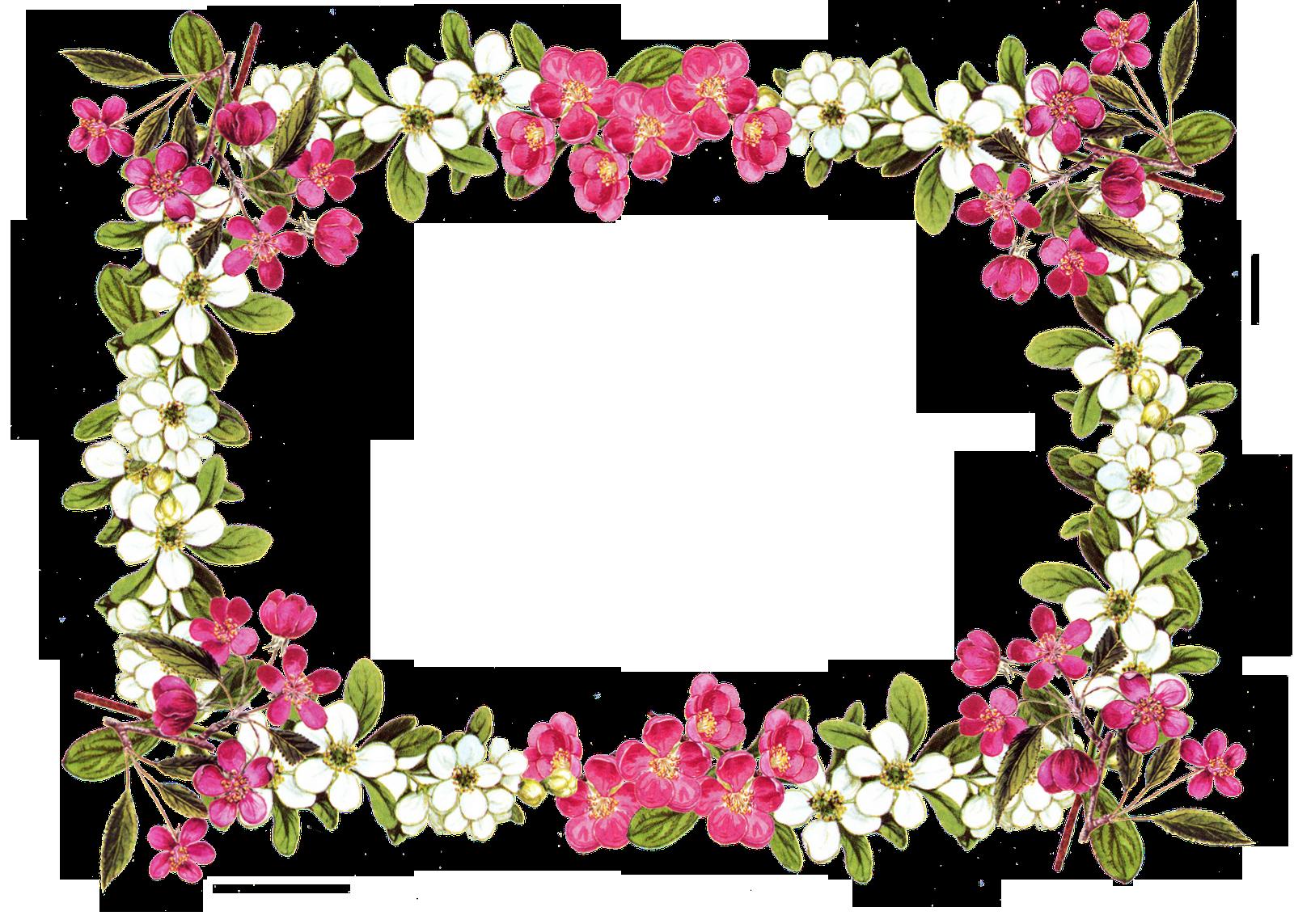 1600x1143 Pansy Clipart Vintage Flower Border