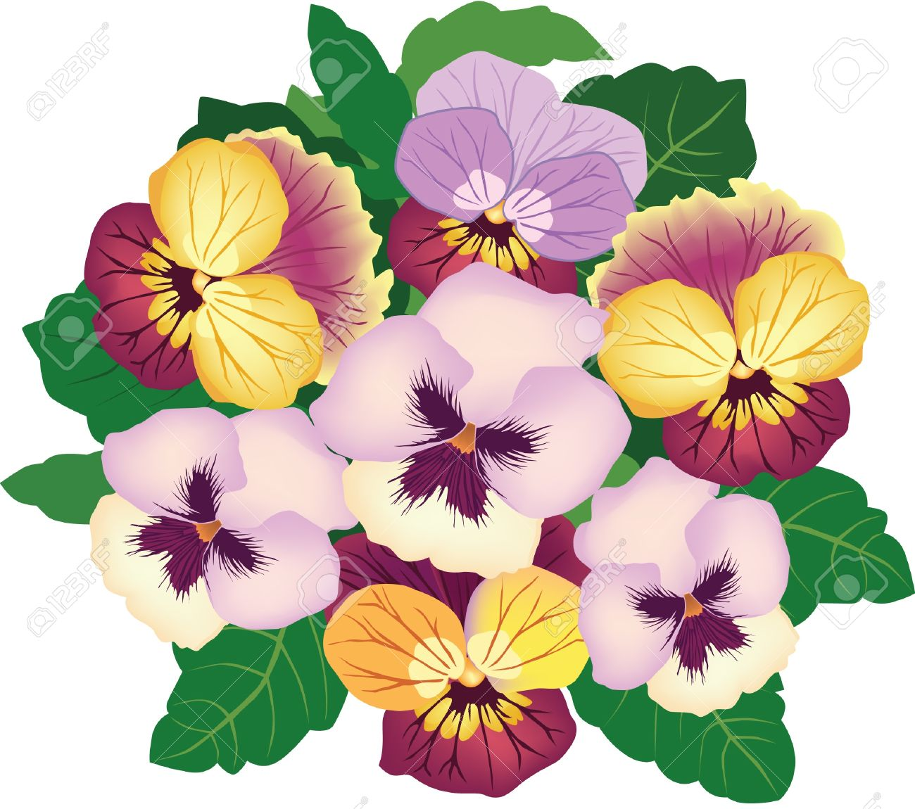 1300x1150 Pansy Clipart Viola Flower