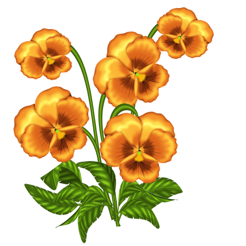 480x480 Wonderful Day ~ Flowers Clipart 2 ~ Clip Art And Album
