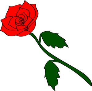 300x294 Clipart Roses