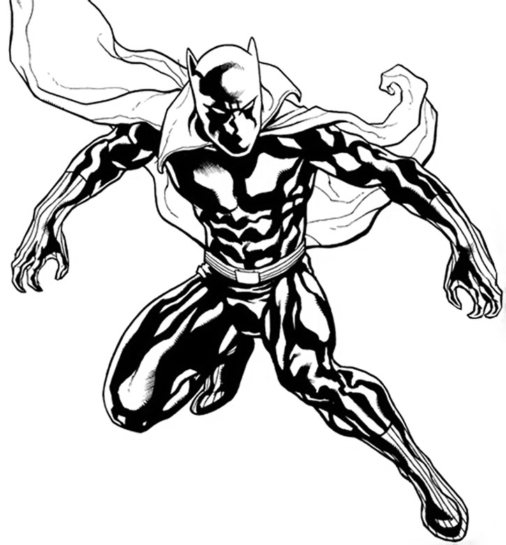 725x781 Drawn Panther Superhero