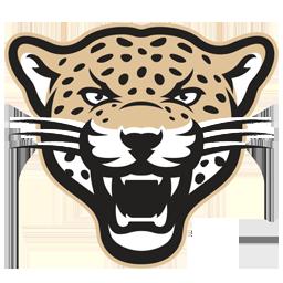 256x256 Panther Logo By Garyosavan