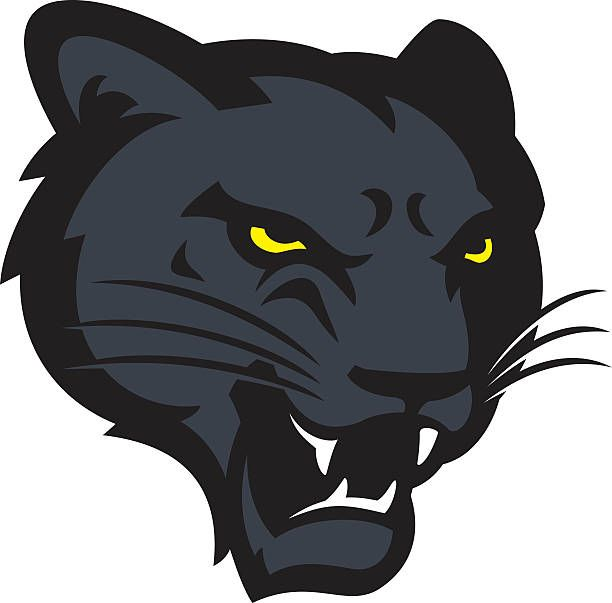 612x603 39 Best Panthers Cougars Logos Images Panthers