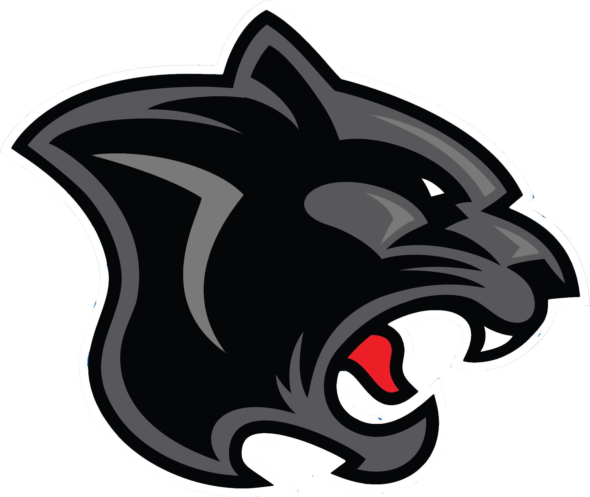 2048x1727 Panther Logo