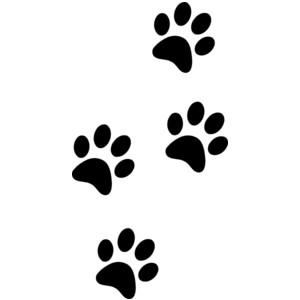300x300 Clipart Paws