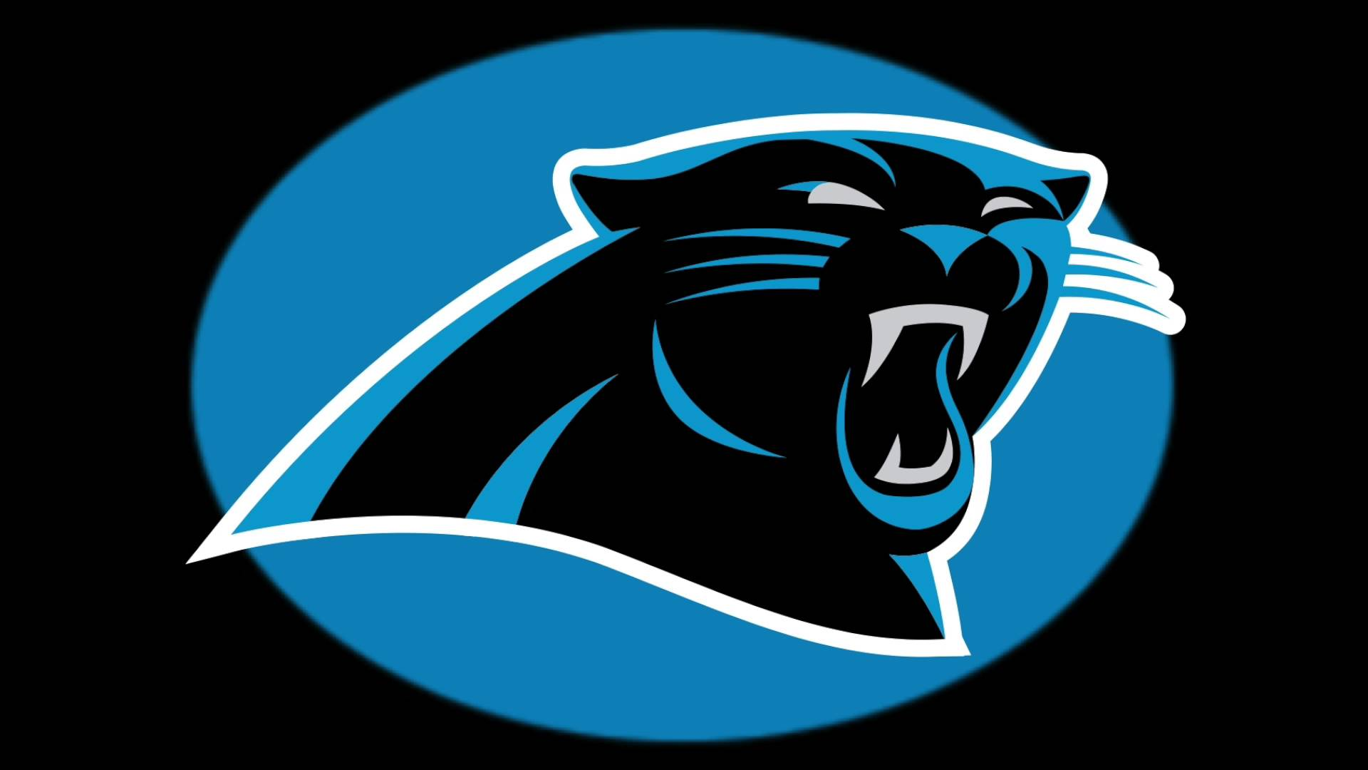 picture regarding Carolina Panthers Printable Logo called Panthers Photos No cost No cost obtain least complicated Panthers