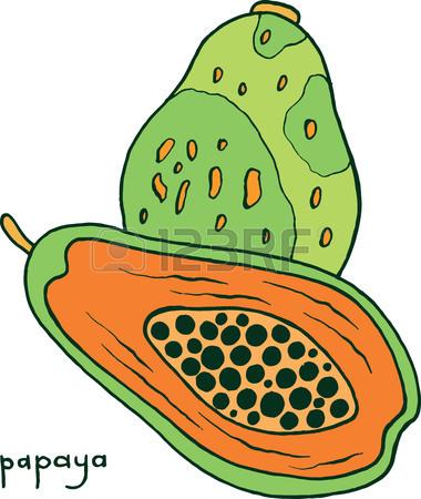 Papaya Clipart