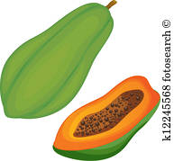 193x179 Papaya Fruit Clip Art Illustrations. 1,725 Papaya Fruit Clipart