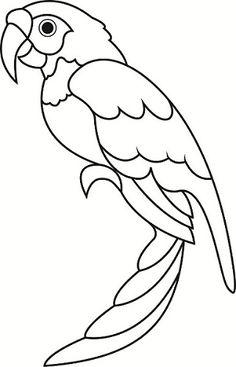 236x367 Parrot Clipart Outline Collection