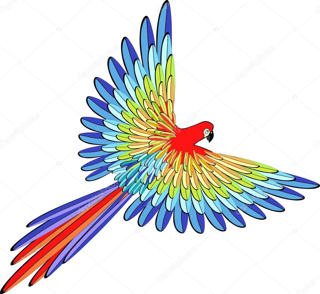 1024x942 Caribbean Red The Parrot Flying. Vector Illustration Stock