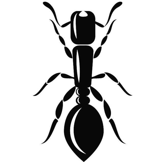 660x660 16 Ant Clip Art Vectors Download Free Vector Art Amp Graphics