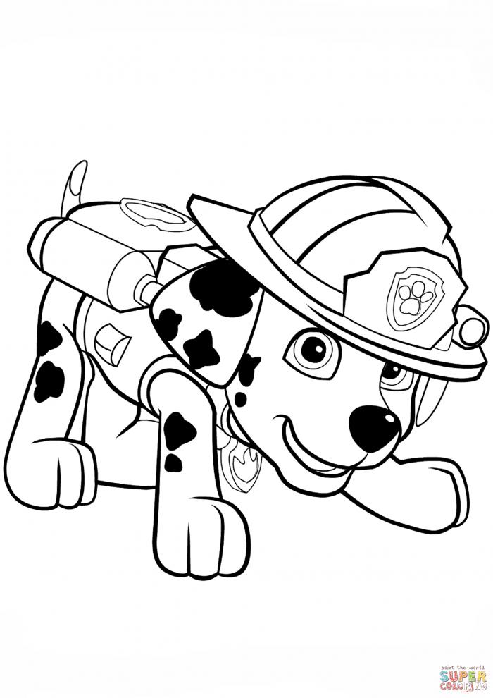 700x990 Paw Patrol Marshall Coloring Page