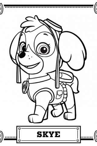 graphic relating to Paw Patrol Coloring Pages Printable known as Paw Patrol Coloring Internet pages Free of charge down load least difficult Paw Patrol