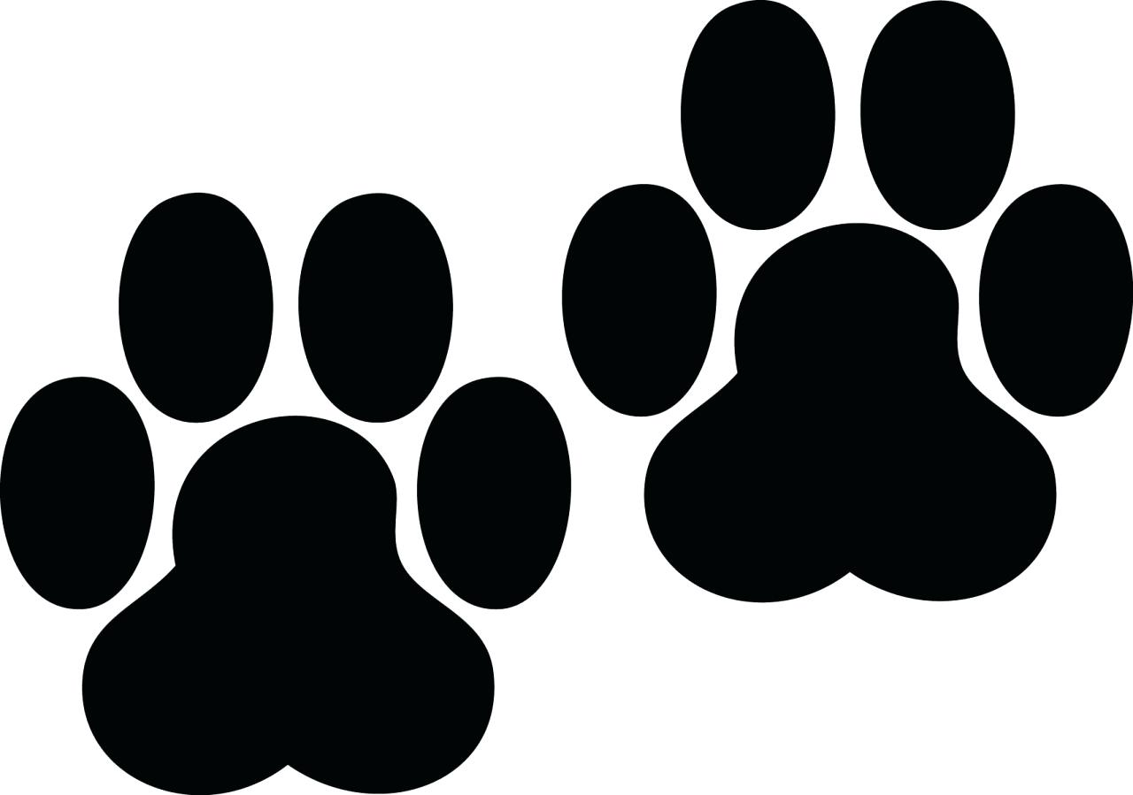 1280x899 Dog Paw Print Wall Decals Dog Paw Heart Decal Check Out Our Shop