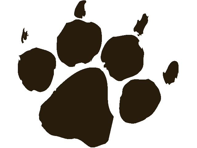 640x480 Dog Paw Prints The Ideas About Paw Print Clip Art On Dog 3