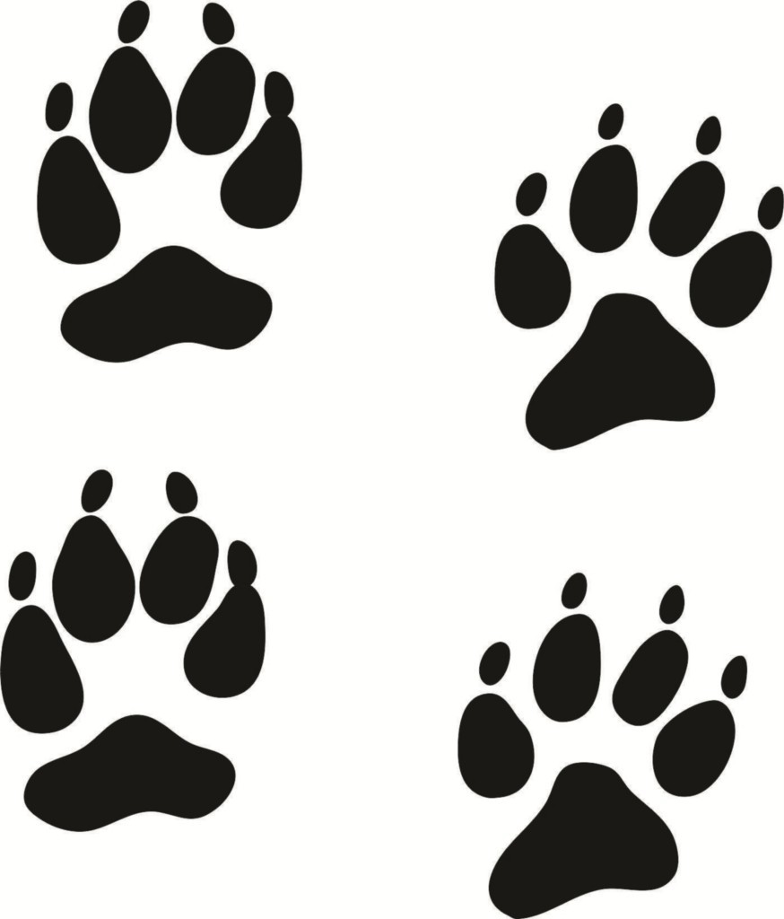 874x1024 Coyote Paw Print Clipart