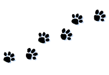 437x300 Dog Paw Prints Clip Art Many Interesting Cliparts