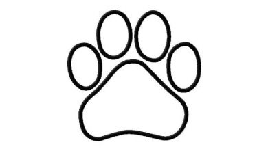 390x221 Dog Paw Outline Clipart