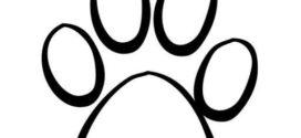 272x125 Paw Prints Clipart On Cat Paw Clip Art