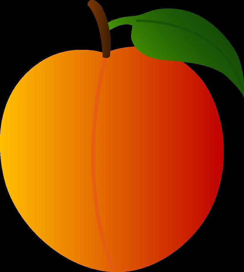 830x928 Peach Clip Art Image