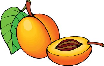 350x222 Peach Clipart Black And White Free Images