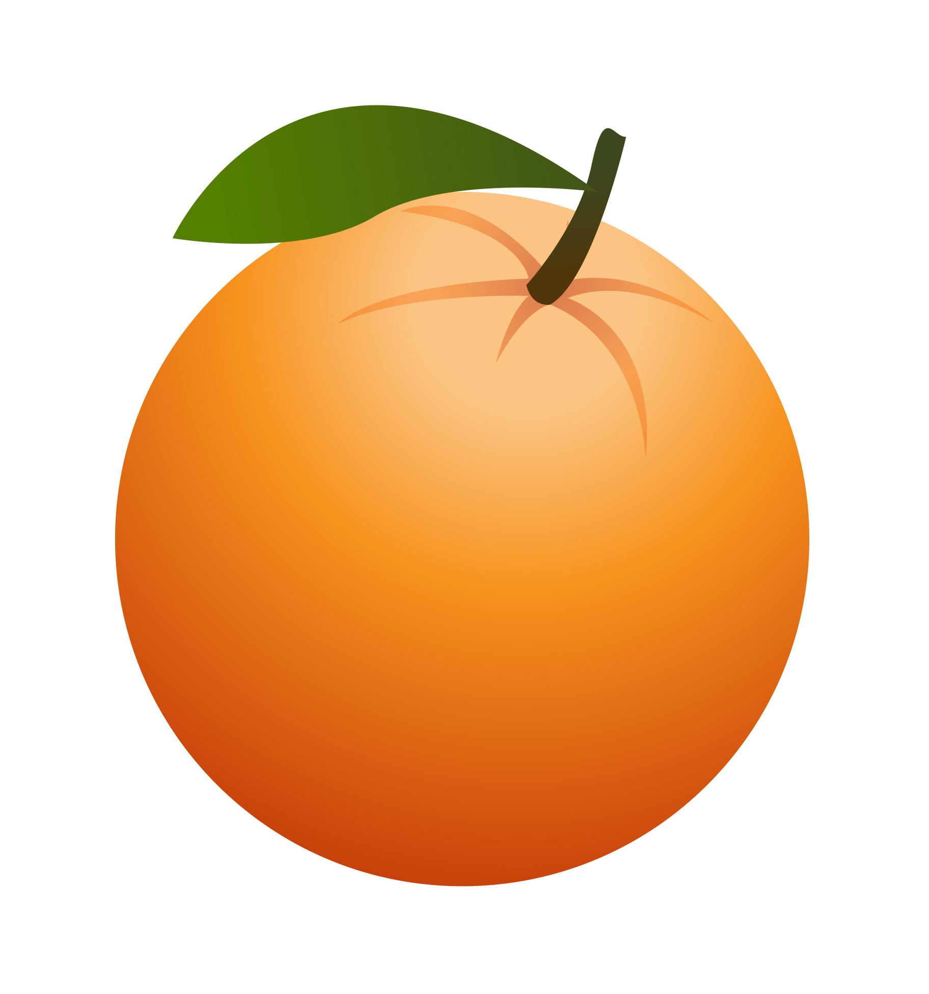 1824x1951 Peach Clipart Orange Fruit