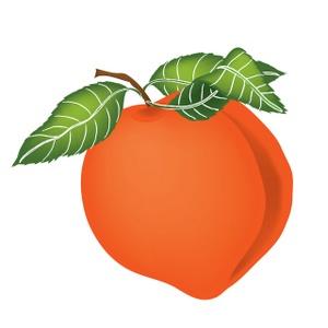 300x300 Peach Clipart Image