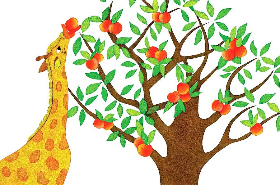 900x596 Peach Clipart Peach Tree