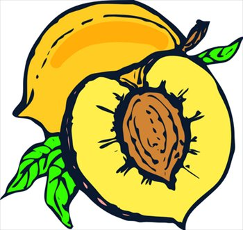 350x331 Free Peaches Clipart Graphics Images And Photos