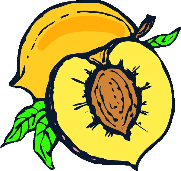 600x567 Peach Clip Art