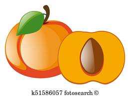 261x194 Peach Slice Clip Art Illustrations. 882 Peach Slice Clipart Eps