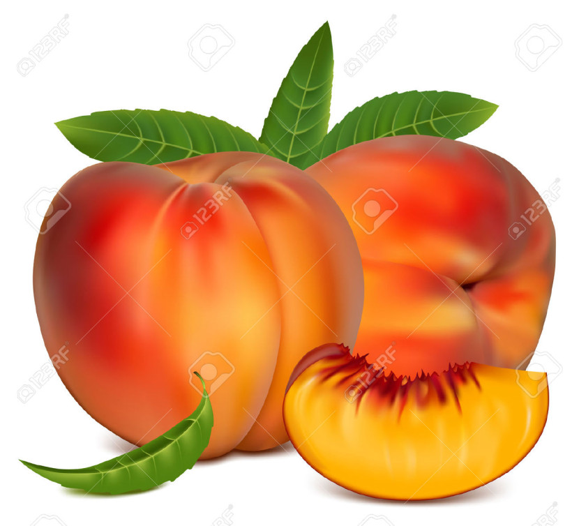 830x754 Peach Clipart Vector