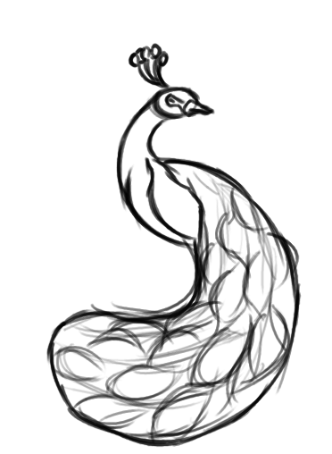 Peacock Clipart Black And White Free Download Best Peacock Clipart