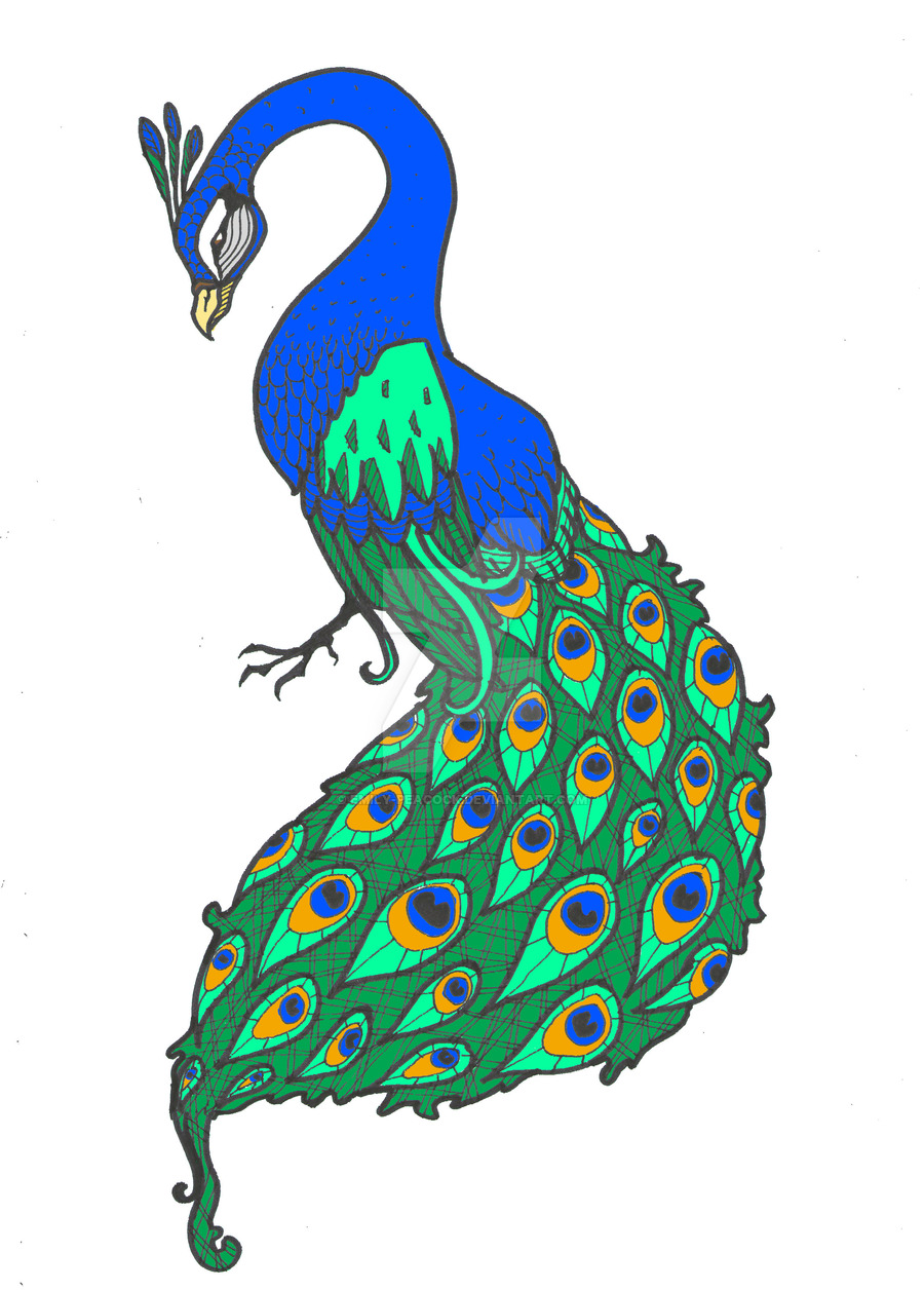 900x1256 E.peacock Logo By Emily Peacock