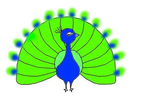 300x200 How To Draw A Peacock