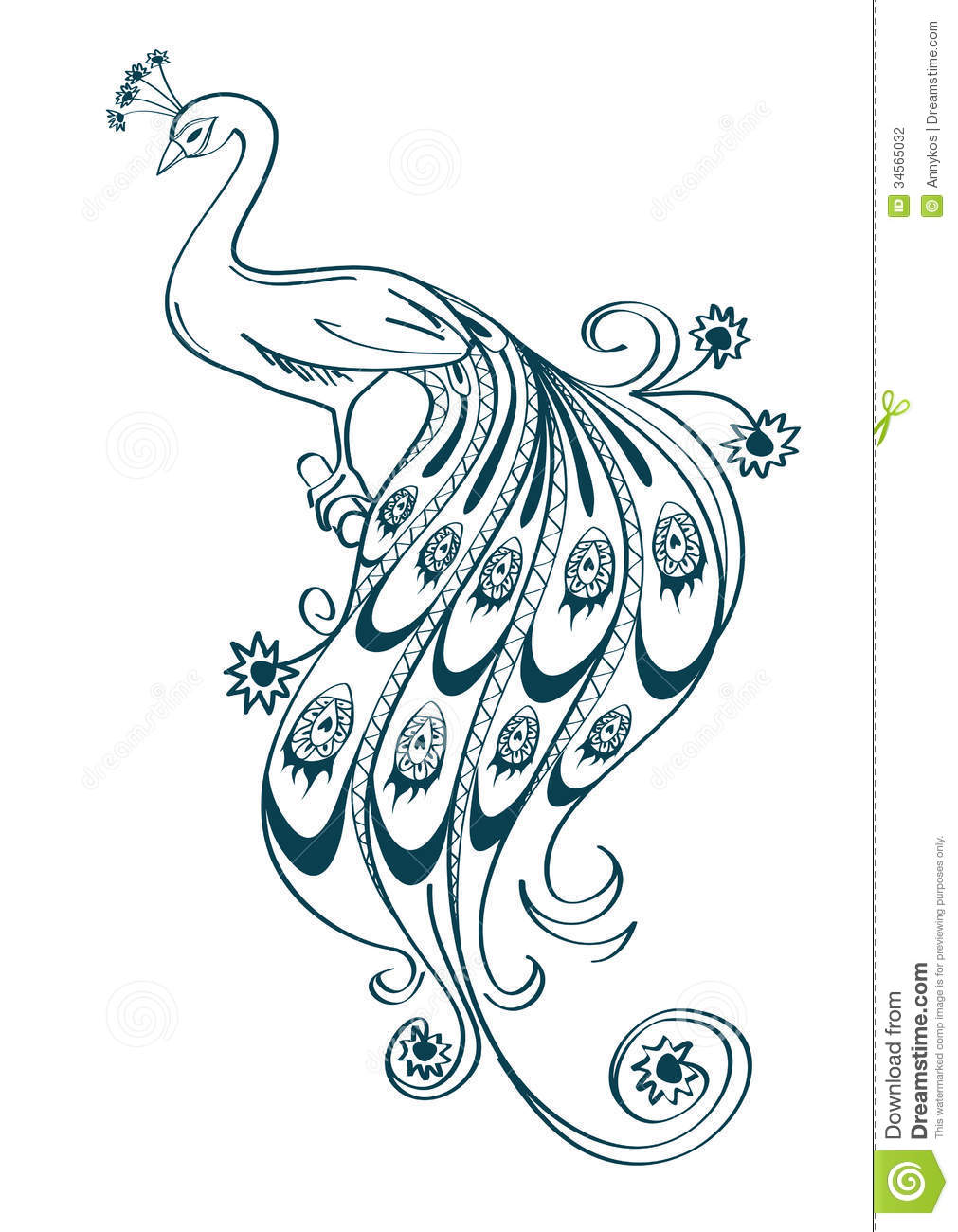 1011x1300 Peacock Clipart Easy