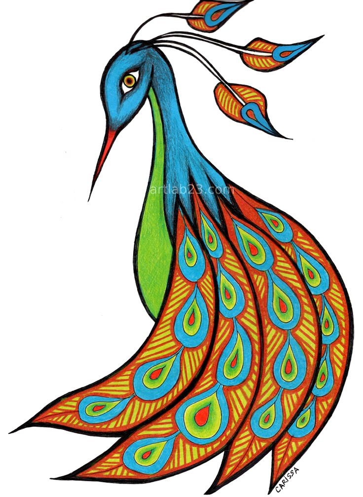736x1007 Peacock Clipart Easy Draw