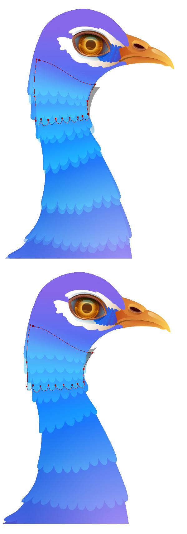 600x1714 Create A Vibrant Peacock In Adobe Illustrator