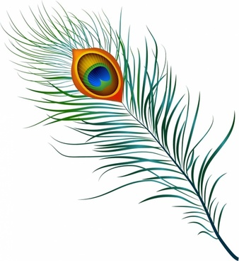 338x368 Peacock Free Vector Download (124 Free Vector) For Commercial Use