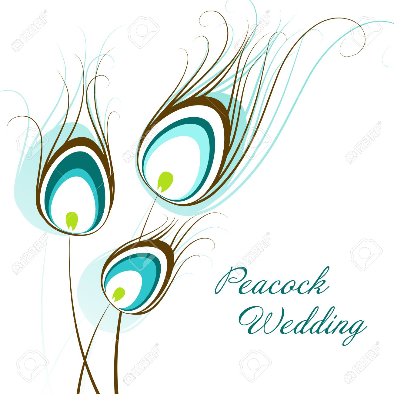 1300x1300 Feather Clipart Peacock Wedding